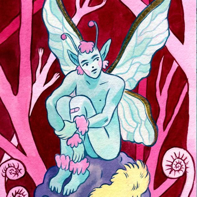 Reclusive Fairy