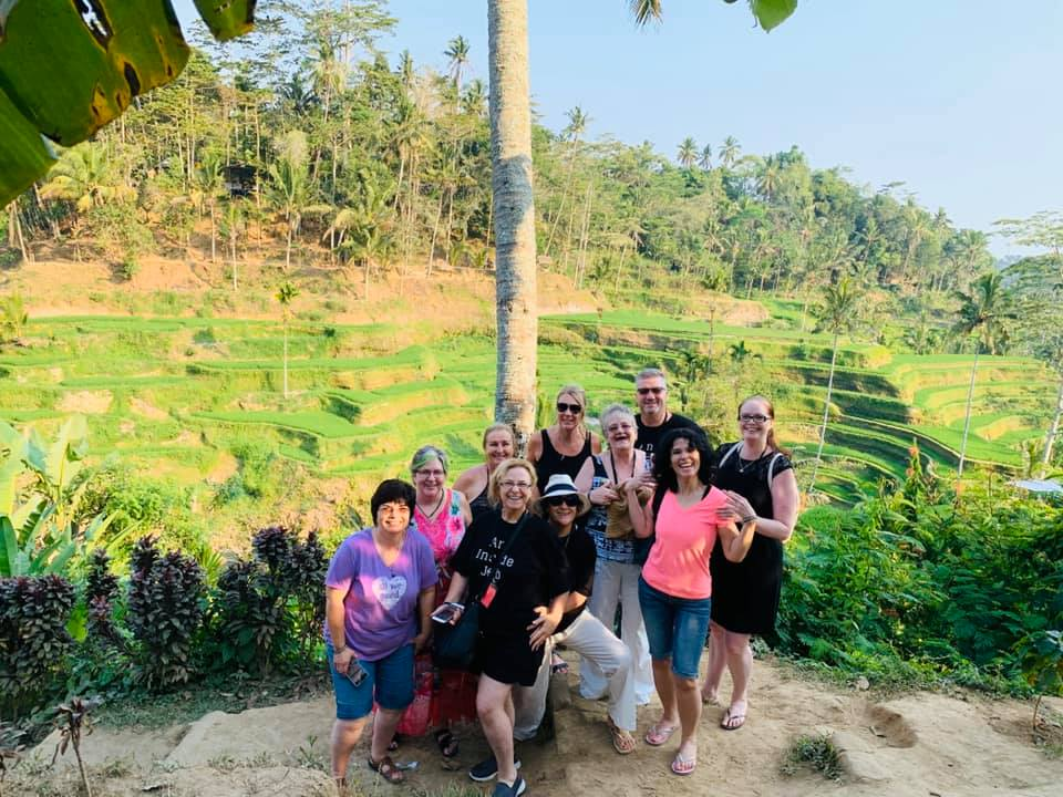 group rice fields