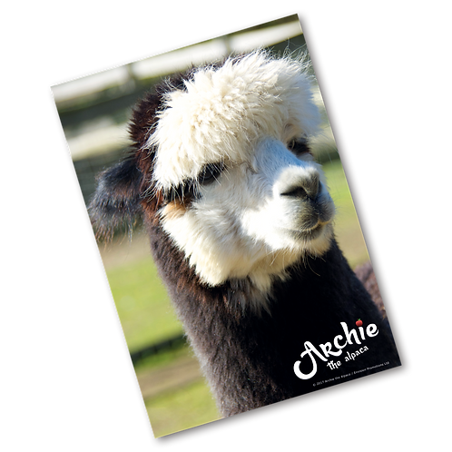 Archie The Alpaca Poster