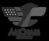 AmCham Logos.png
