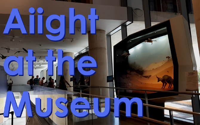 Aiight at the Museum: A Review of the Steinhardt Museum of Natural History