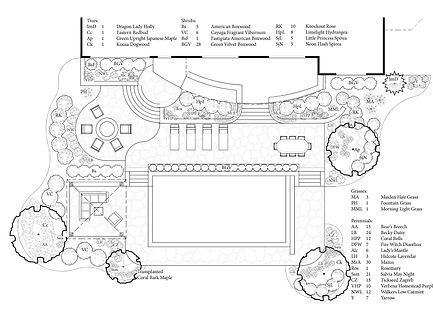 Davis Laurie Pool Design 4-11-2015.jpg