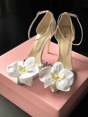Alissa Ayakkabı