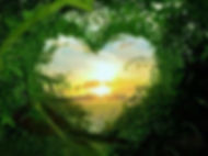 healing the heart with nature pic