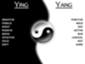 yin/yang meanings