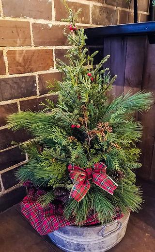 Christmas Trees. Outdoor winter planter. Christmas Decoration. Outdoor Decor. Christmas Holiday Greenery.