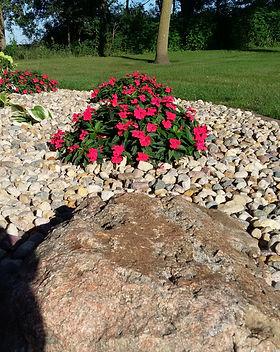 Flowers plants. Landscaping. Decorative Rock.