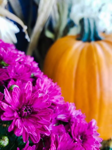 Pumpkins, gourds, Mums. Fall Decor. Outdoor decor. Fall Mums. Fall Color.