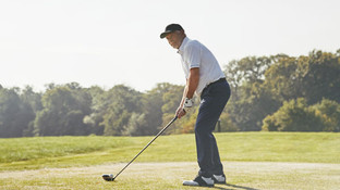 Lee, golfer