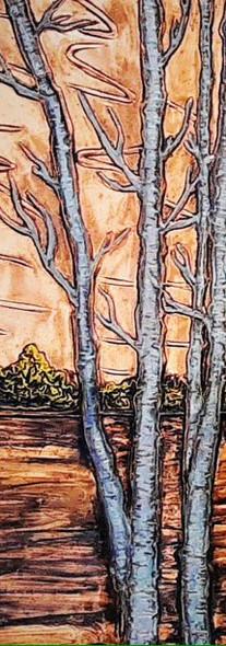 Birtch trees landscape