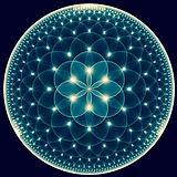 fiore della vita blu.jpg