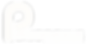 PN Logo Web  White Transferred Out logo