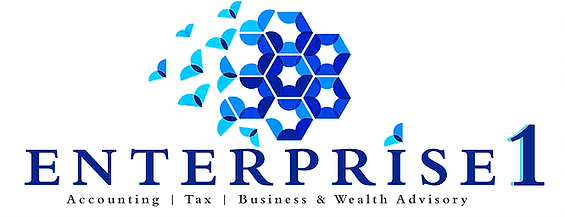 Chartered accountants and tax agents