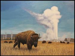 Yellowstone Buffalo ( 2014 - 40 x 30 Oil On Linen Canvas )