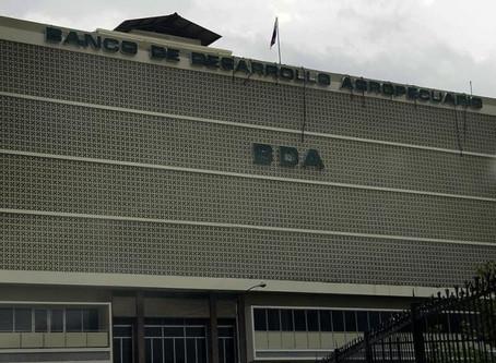 Productores de Bocas del Toro tendrán hasta el 2021 para pagar préstamos del BDA