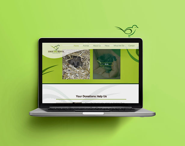 Gower Bird Website Mockup 2.jpg