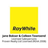 Jane-Colleen Ray White - a sponsor of the Dunedin Art Show