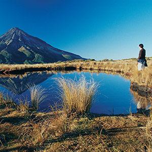 Best New Zealand Beer Trail in Taranaki
