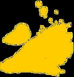 YellowSplash2.png