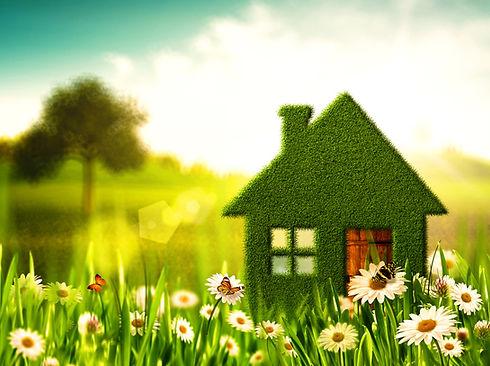 green-healthy-home.jpg