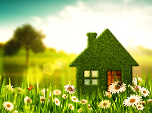 green-healthy-home.jpg