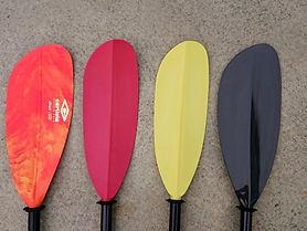 paddle comparison_edited.jpg