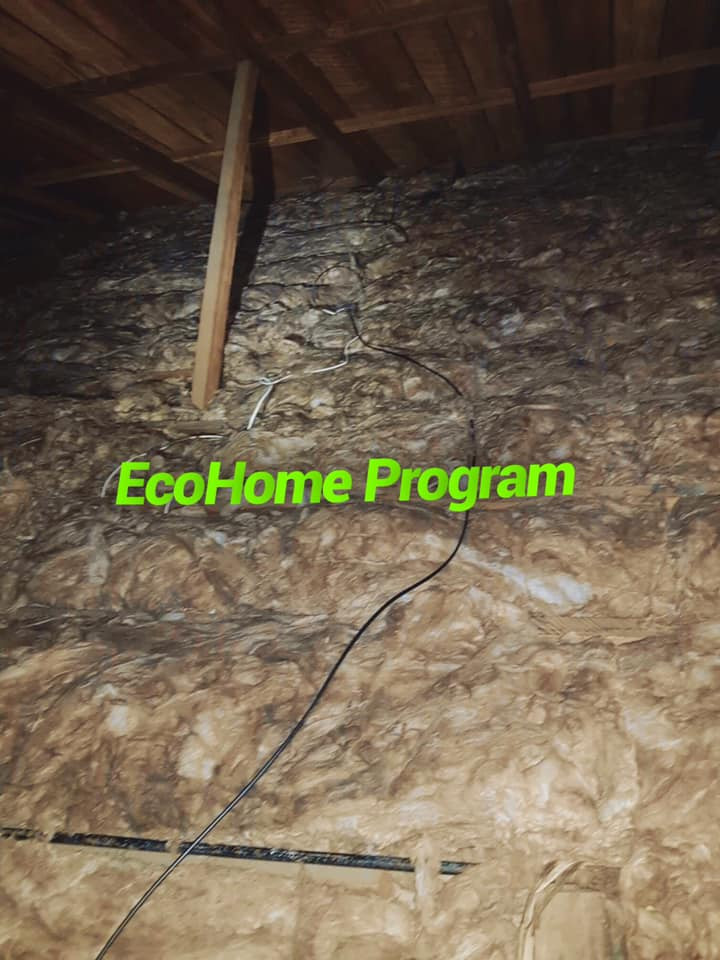 ecohome ceiling 2.jpg