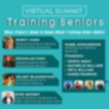 Seniors Summit.png