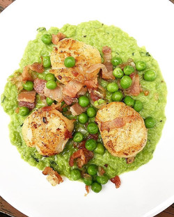 Seared scallops, bacon, shallot, and peas puréed with mint