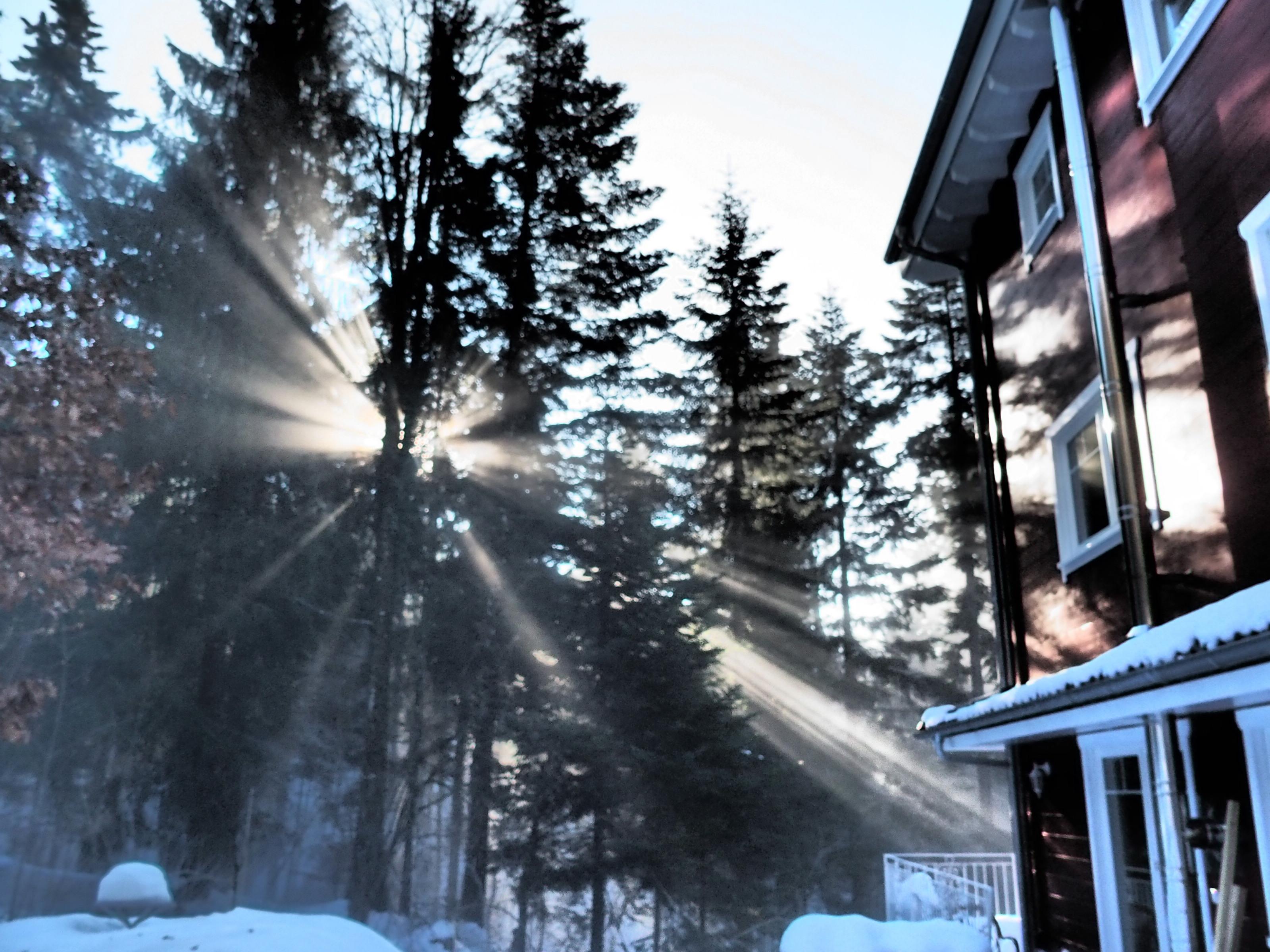 Winter beim Schwedenhaus