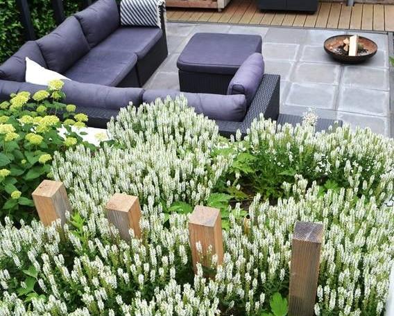 tuin-architect-achterhoek-montferland-tu
