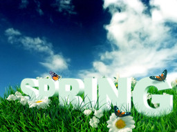 Put the spring back in your step