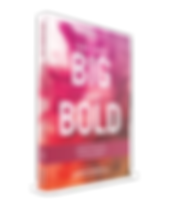 Dreaming Big and Being Bold book