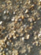 4MistoGhiaia1.jpg