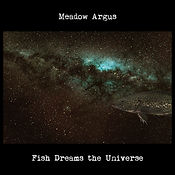 Fish Dreams the Universe Cover 3 Harry.j