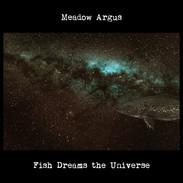 Fish Dreams the Universe Cover