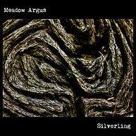 Silverling Cover.jpg