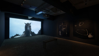 Routes/Roots 「道と根」 Tokyo Arts and Space トーキョーアーツアンドスペース