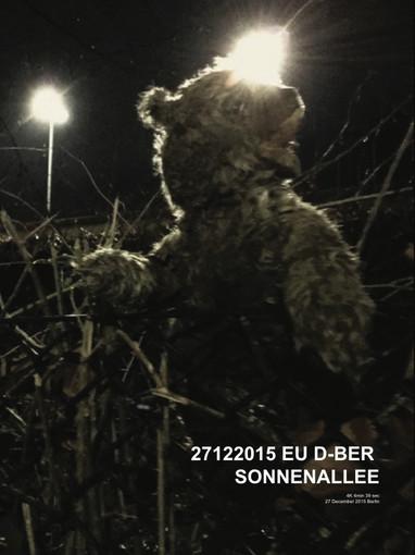 27122015_EU_D-BER_SONNENALLEE