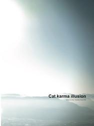Cat karma illusion