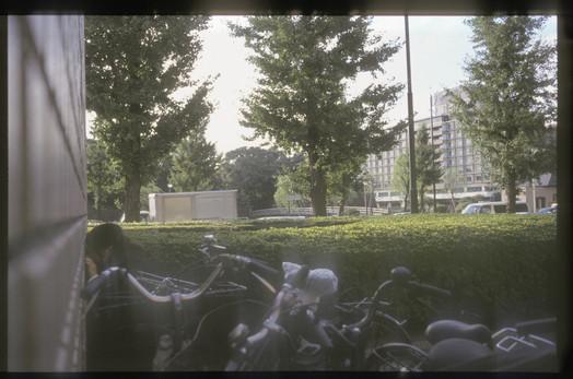 th_shingo biru022.jpg