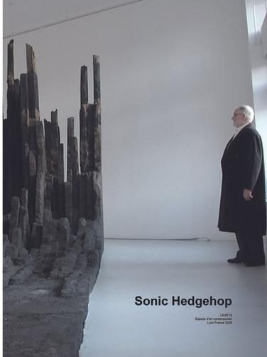Sonic Hedgehop