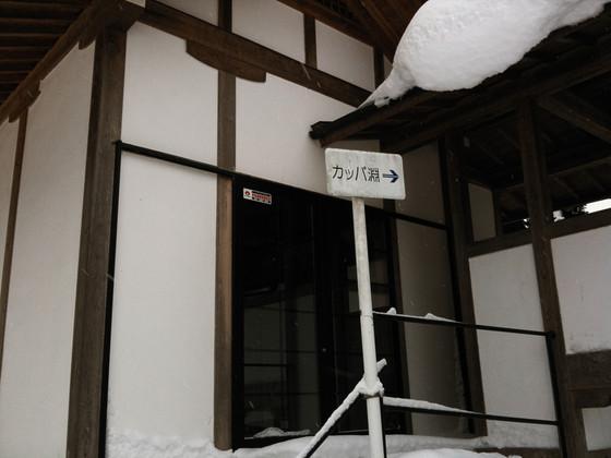 2011-01-06 28_ps.jpg
