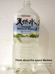 Think about the space Medaka : Tokyo 2004