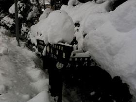 2011-01-06 37_ps.jpg