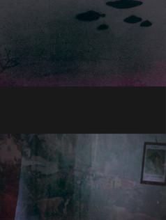 shingo-book_v9.indd 11 のコピー.jpg