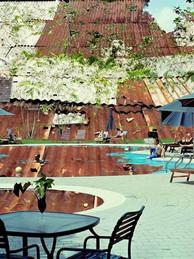 Hilton Malaysia : Nepasmengertropvite (Don'teattooofast)
