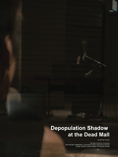 Depopulation Shadow at the Dead Mall