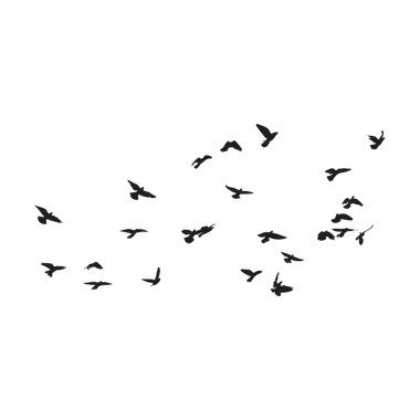 AVES (338) (2017_11_22 22_13_11 UTC).png