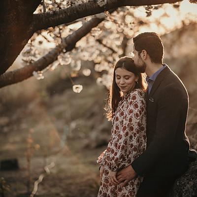 Preboda en el cerezo en flor